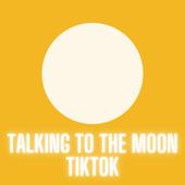 Talking To The Moon Tiktok (Remix)