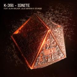 View album Ignite (feat. Alan Walker, Julie Bergan & SeungRi) - Single