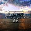 Salebarbes - Gin à l'eau salée artwork