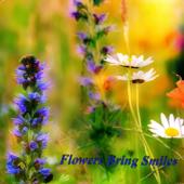 Flowers Bring Smiles - EP