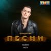 Terry - МЕГА artwork