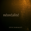 Steve Barakatt - Néoréalité kunstwerk