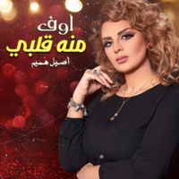 Download Mp3 Aseel Hameem - Awof Meno Galbi - Single