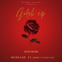Download Haye Mujhe (feat. Dhruv Sthetick) [Gulab EP] - Single MP3 Song