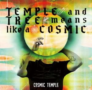 COSMIC TEMPLE - Das Gemaine 2000