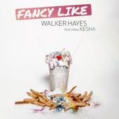 Walker Hayes & Kesha - Fancy Like (feat. Ke...