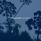 Tule kesäyö (Radio Edit) - J. Karjalainen