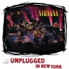 mtv-unplugged-in-new-york-live