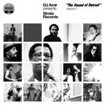 DJ Amir Presents 'Strata Records-The Sound of Detroit,' Vol.1