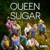 Queen Sugar, Season 3 - Synopsis and Reviews