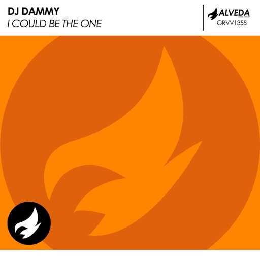 I Could Be the One - Single by DJ Dammy