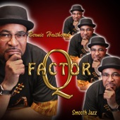 Q-Factor - Sophisticated Funk