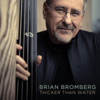 Brian Bromberg - Thicker Than Water  artwork