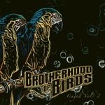 Brotherhood of Birds - Recluse