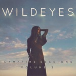 Campfire Sessions, Vol. 2 (Live from Antebellum Mansion) - Single