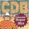The Charlie Daniels Band - Essential Super Hits  artwork