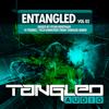 Various Artists - EnTangled, Vol. 02: Mixed By Ryan Bentham artwork