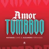 Natanael Cano - Amor Tumbado