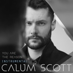 You Are the Reason (Instrumental) - Single