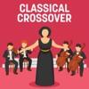 Various Artists - Classical Crossover Album
