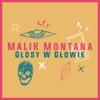 Malik Montana & FRNKIE - Glosy w Glowie artwork