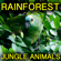 Rainforest Jungle Animals - Nature Sounds Relax