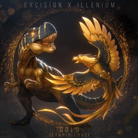 EXCISION AND ILLENIUM feat SHALLOWS - Gold (Stupid Love) Chords and Lyrics