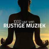 Zen Muziek