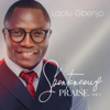 Laolu Gbenjo - Oniduro artwork