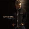 Minimum Wage - Blake Shelton mp3