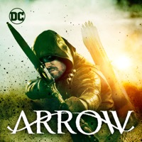 Arrow: Season 1-6 (iTunes)