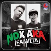Kimcil Kepolen (feat. PJR) - NDX A.K.A