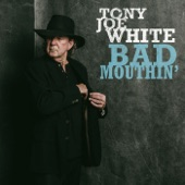 Tony Joe White - Rich Woman Blues