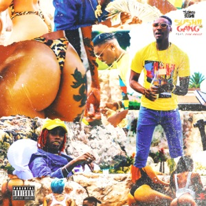 Sushii Gang (feat. YNW Melly) - Single Mp3 Download