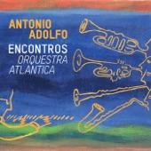 Antonio Adolfo - Milestones