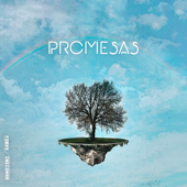 Promesas (feat.Indiomar) - Funky