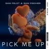 Pick Me Up by Sam Feldt & Sam Fischer