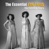 The Emotions - Best of My Love kunstwerk