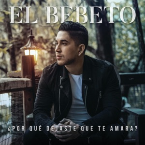 ¿Por Qué Dejaste Que Te Amara? - Single Mp3 Download
