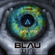 Blau Transition - Connected