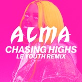 Chasing Highs (Le Youth Remix) - Single