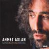 Ahmet Aslan - Minnet Eylemem artwork