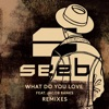 What Do You Love (feat. Jacob Banks) [Remixes], Seeb
