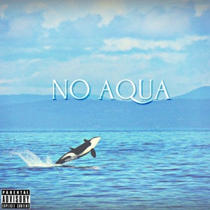 No Aqua - Single Mp3 Download