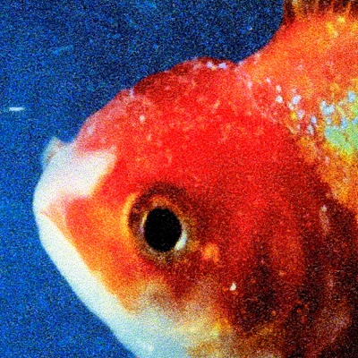 Big Fish - Vince Staples song