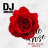 La Vie en Rose Robert Abigail Remixes Single