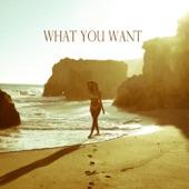 Symphani Soto - What You Want (feat. Kim)