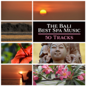 The Bali Best Spa Music - 50 Tracks: Tranquil Paradise Sounds, Massage, Meditation, De-Stress and Relaxation