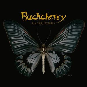 Black Butterfly Mp3 Download
