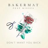 Don't Want You Back (feat. Kiesza) - Single